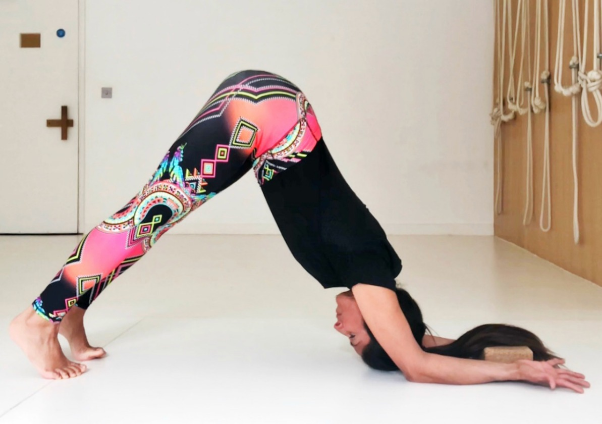 Asana Data: Downward Dealing With Forearm Canine Pose 1